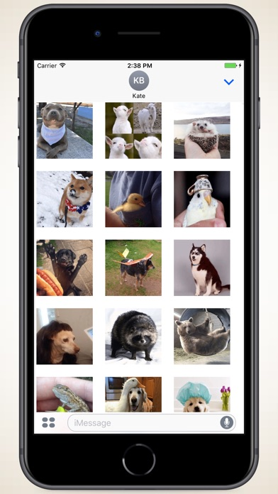 Screenshot for Variety of Animals Stickers in Colombia App Store
