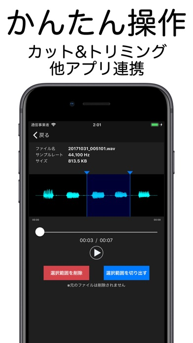 PCM録音 Pro screenshot1