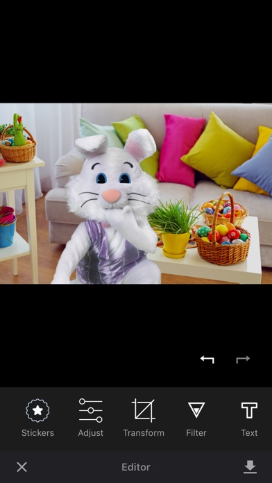 Catch the Easter Bunny screenshot 4