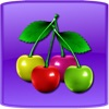 Fruit Master Lite