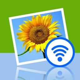 WiFi Transfer Lite - Photo