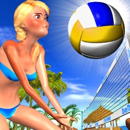 Beach Volleyball OverTheNet