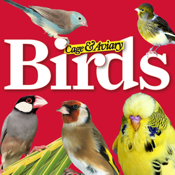 Cage Aviary Birds app review