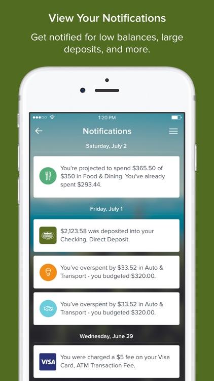 Budgeting Tools screenshot-4