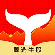 鲸鱼选股-炒股,股票