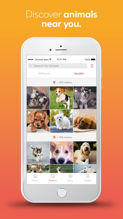 grinzoo - my social pet app screenshot-4