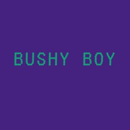 Bushy Boy Gaming Phrases