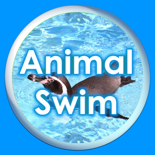 Animal Swim Silhouette Touch