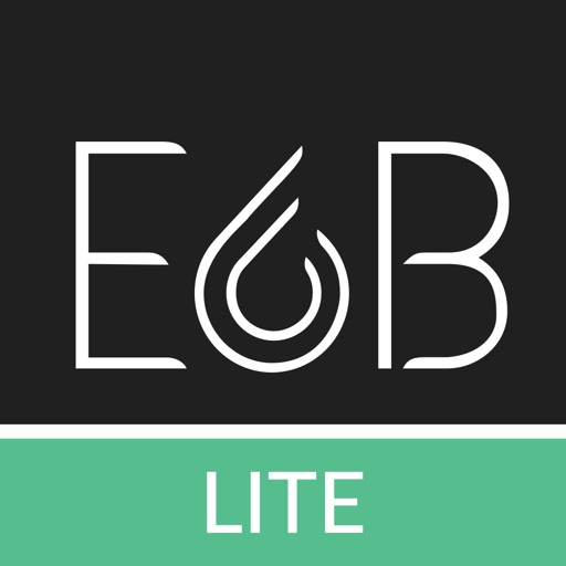 Pajlot E6B Lite
