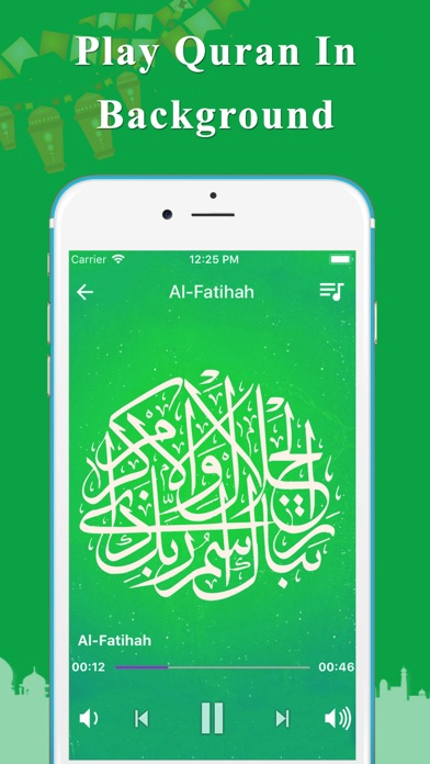 Quran MP3 Audio screenshot four