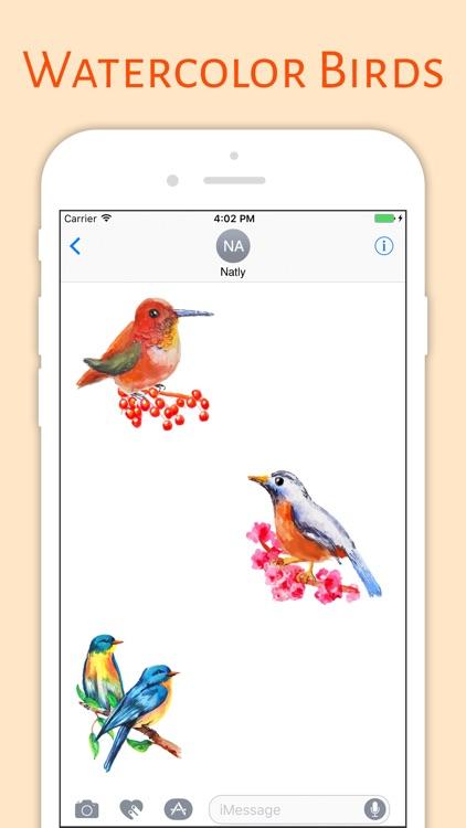 Water Color Birds screenshot-3