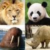 動物クイズ:動物園全体 - iPadアプリ