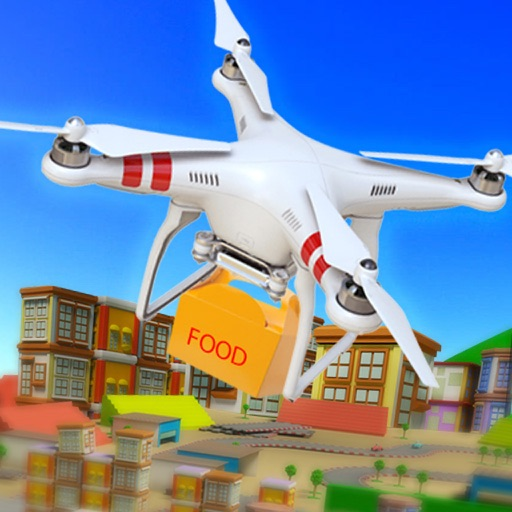 Drone Simulator For Food Delivery