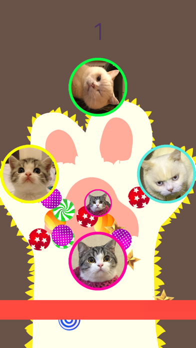 CopyCat - Cute Cats (Marbles and Sesame) Matching screenshot one