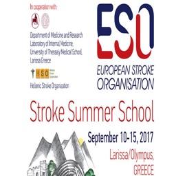 ESO SUMMER SCHOOL 2017