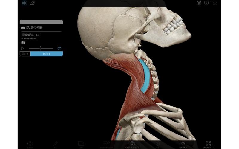 Muscle Premium screenshot1