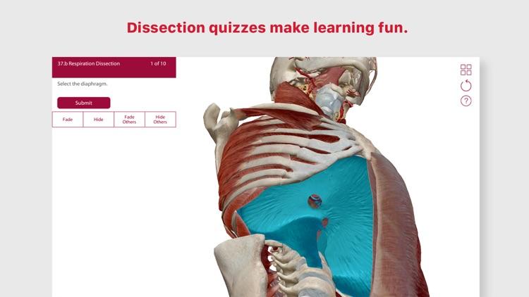 Anatomy & Physiology screenshot-4