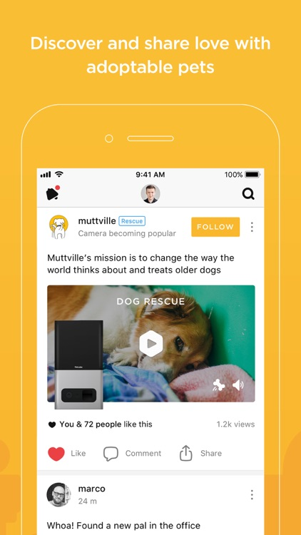 Petcube screenshot-3