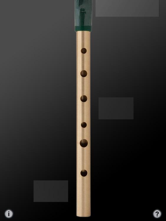 Tin Whistle Pro screenshot-3