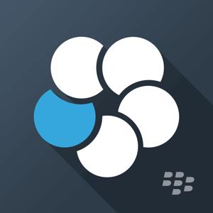 BlackBerry Work Business app