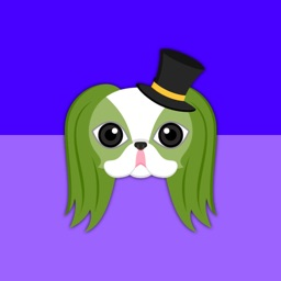 St Patrick's Day Japanese Chin