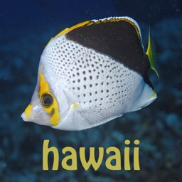 Scuba Fish Hawaii