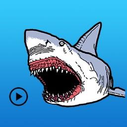 So Ferocious Shark Sticker