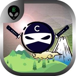 Ninja Zig Zag - Down The Mountain