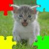 小猫(猫儿,猫仔)拼图
