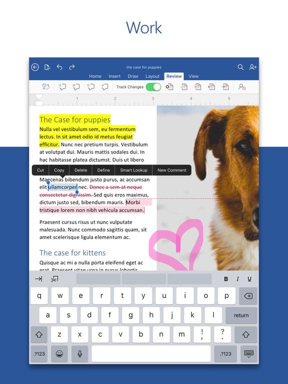Microsoft Word iPad