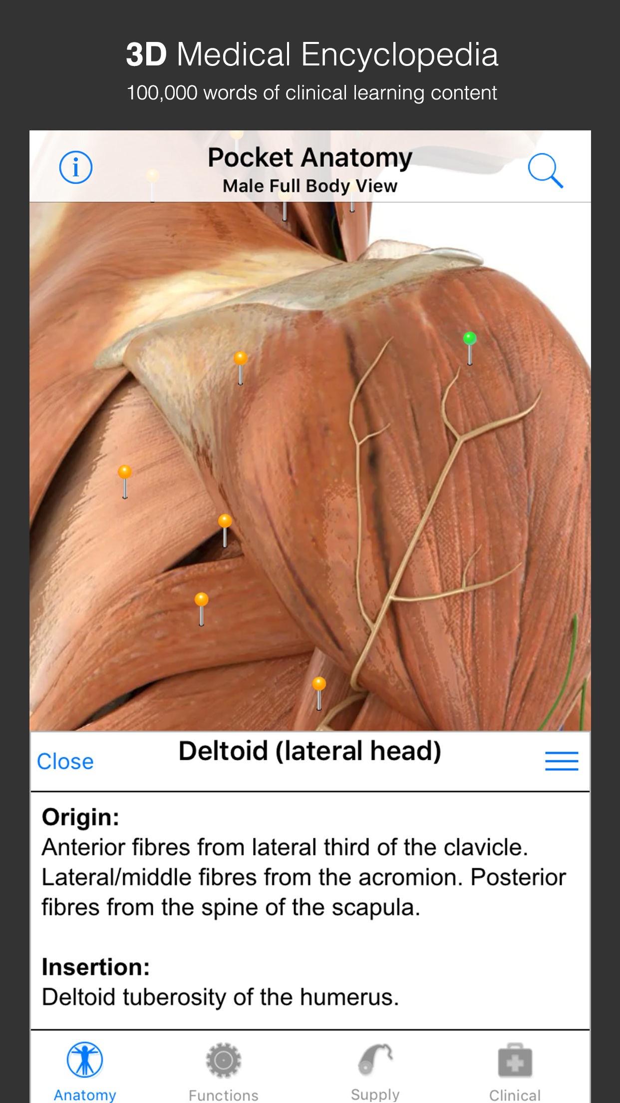 Screenshot do app Pocket Anatomy (2018)