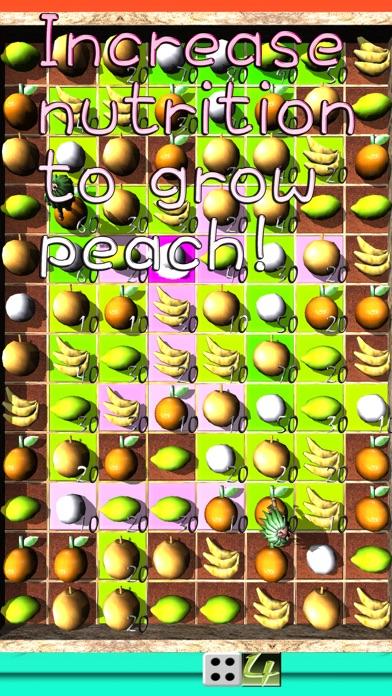 Momo's Peach Festival Farm screenshot 3