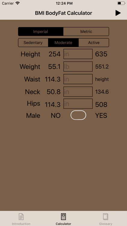 BMI & Body Fat Calculator