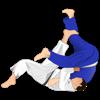 Judo Simplified!