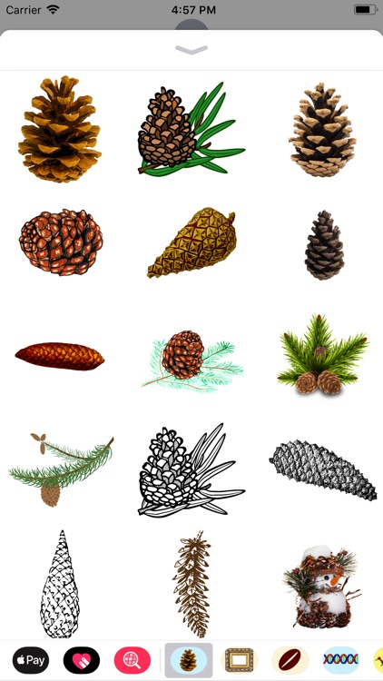 Pine Cone Stickers screenshot-0