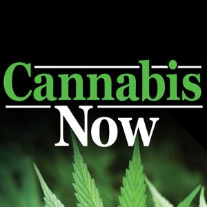 Cannabis Now ios app