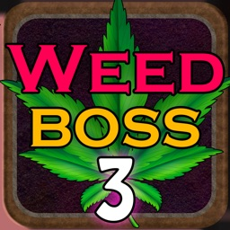 Weed Boss 3 - Idle Tycoon Game