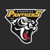 Ringerike Panthers