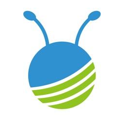 Ant Carcam
