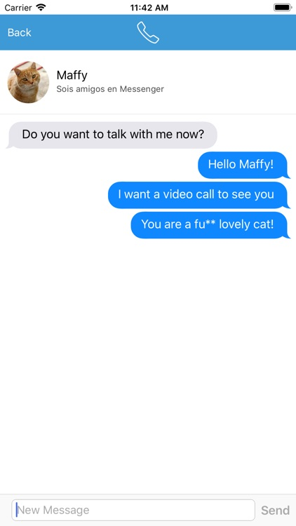 Video Call with Cat