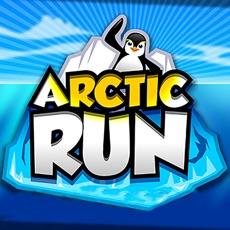 Activities of Arctic Run 3D