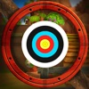 Archery Blast King