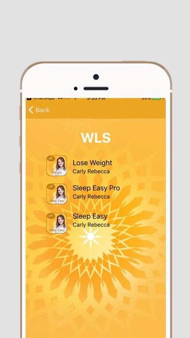 WLS-4