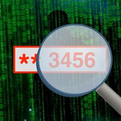 Checker007 Snowden Password