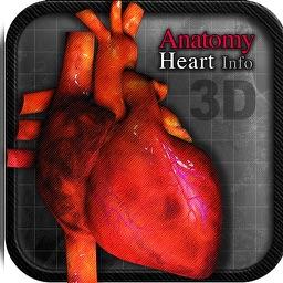Anatomy Heart info