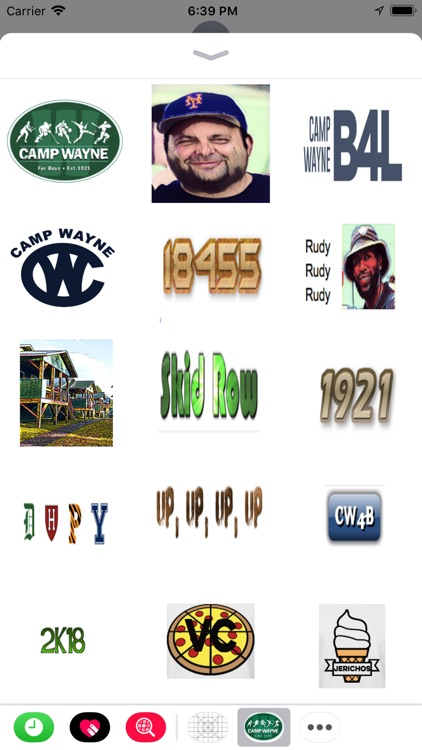 Camp Wayne Boys Sticker pack