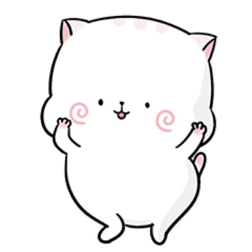 Exotic Cat Cute Stickers
