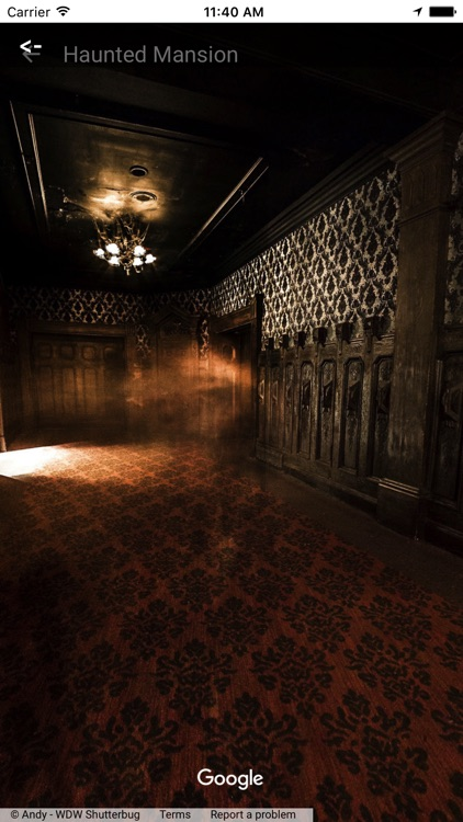 VR Guide: Tokyo Disneyland