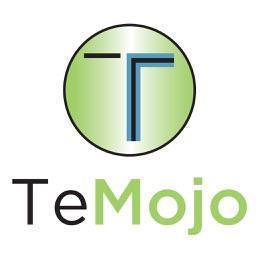 TeMojo Team Center