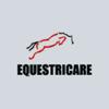 Equestricare Horse Massage